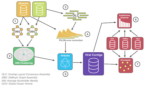 Bioinformatics pipeline for VirION reads and complementary short-read sequencing for viral metagenomes.