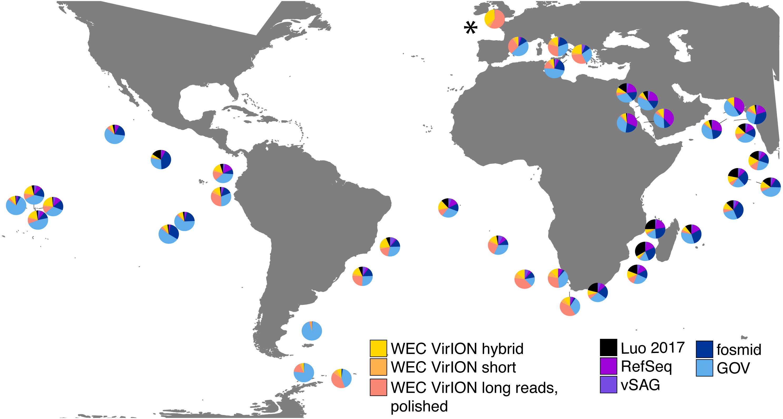 Long-read viral metagenomics captures abundant and microdiverse