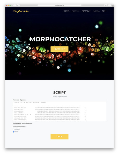 Web interface of the MorphoCatcher service with an alignment input bar and the output file format options.