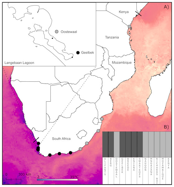 Sampling sites and clustering of Z. capensis populations.