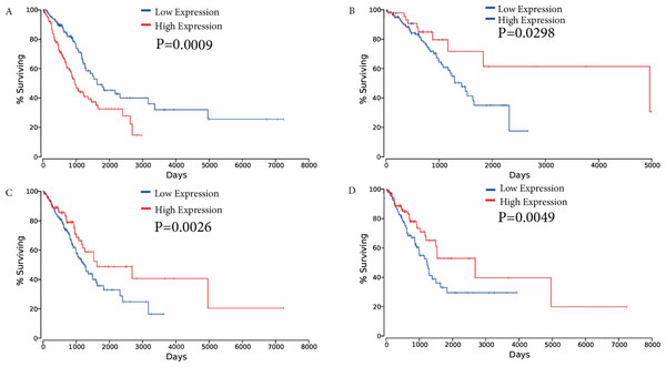 Kaplan–Meier survival curves for four ceRNAs (FAM83A, miR-34c-5p, KCNQ1OT1 and FLJ26245) significantly associated with overall survival.