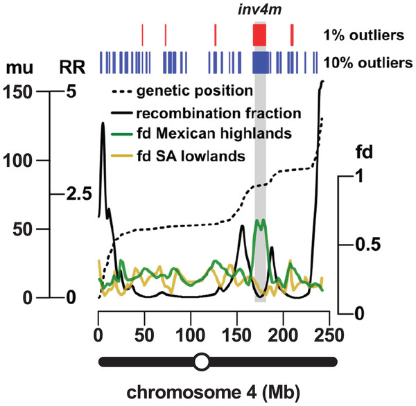 Introgression events on chromosome 4 co-localize with a previously reported inversion.