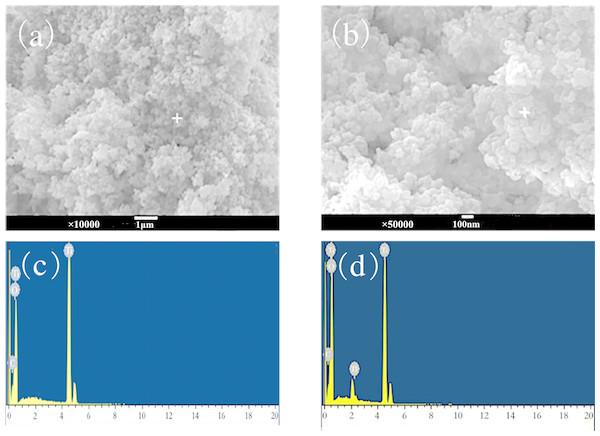 SEM-EDS image after adsorption of nano-TiO2 (A and C) before adsorption; (B and D) after adsorption.