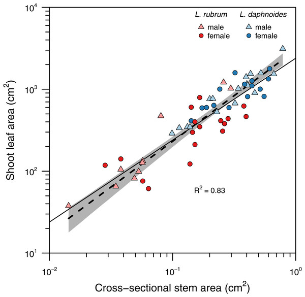 Relationship between total shoot leaf area and stem cross-sectional area.