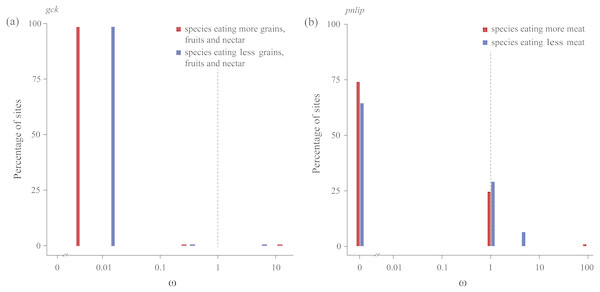 Patterns of natural selection on the carbohydrase gene gck and the lipase gene pnlip.