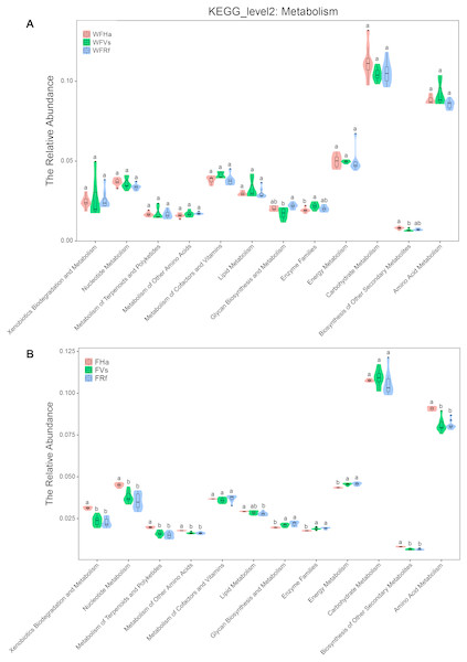 The relative abundance of microbial functions related to metabolism predicted by PICRUSt.