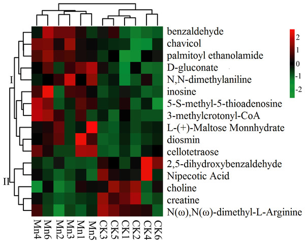 Heat map of significantly differential metabolites.