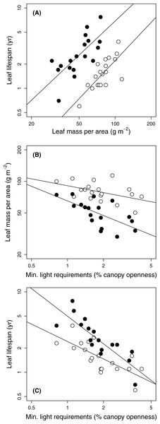 Relationships among leaf traits and minimum light requirements of 19 temperate forest evergreens.