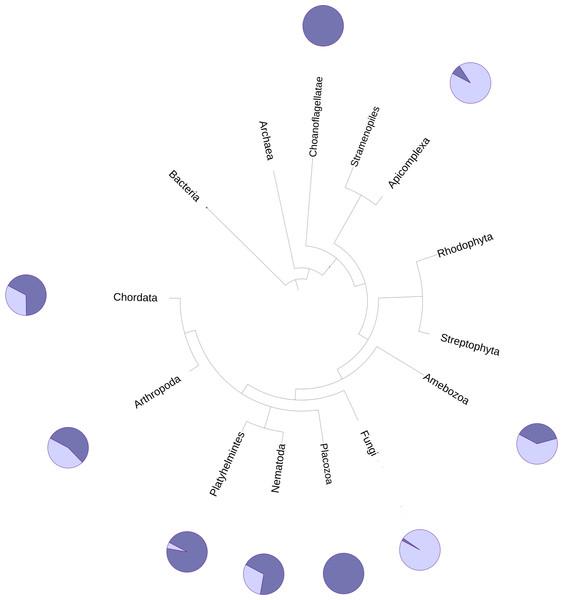 Phylogenetic spread of DUF2362 family.