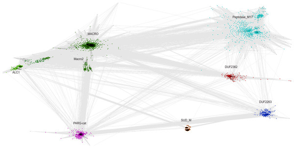 CLANS graph visualizing BLAST-detected sequence similarities among proteins of the Macro domain superfamily.