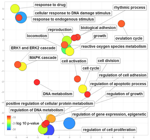 Visualization of functional enrichment analysis results showing the statistically (log10 P-value) over-represented gene ontology terms for 52 genes and their roles.