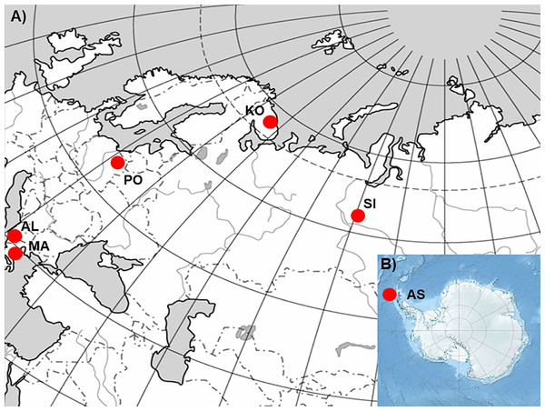 The geographic location of the studied sampling sites of Poa annua on a contour map of (A) Eurasia and (B) Antarctic.