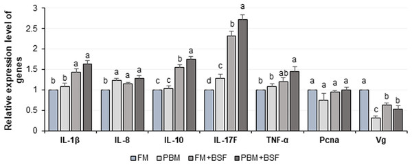 Relative expression level (Mean ± SE) of major cytokines and crustacean reference genes in marron intestine at the end of 60 days feeding trial.