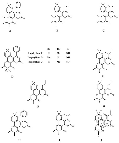Structures of isolated compounds.