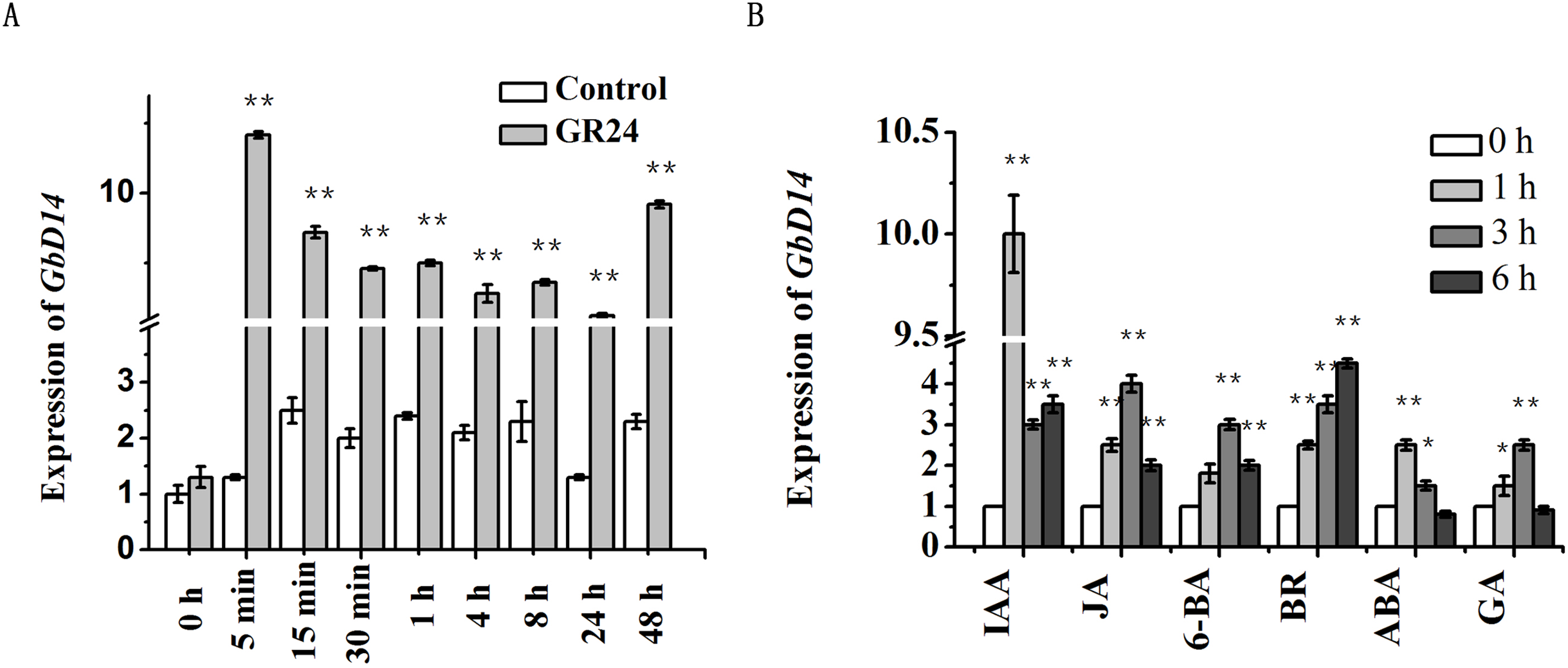 Functional analysis of the GbDWARF14 gene associated with branching
