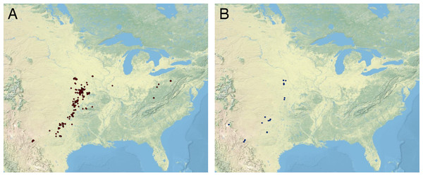 Distribution of Pennsylvanian and early Permian cephalopods.