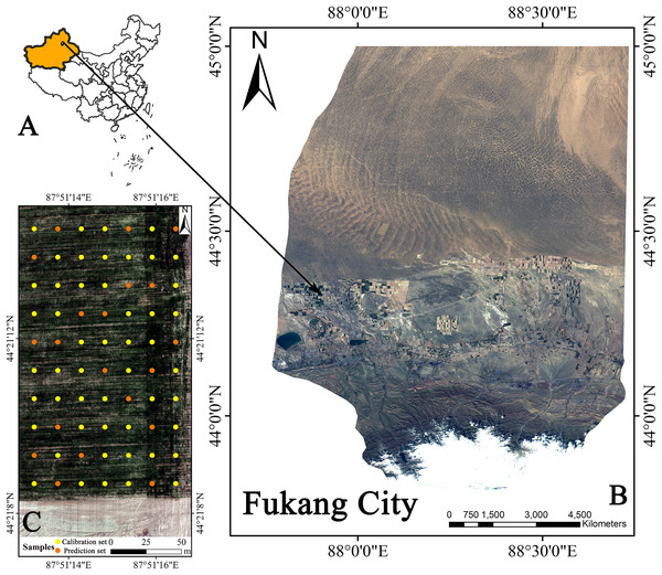 Geographical location of Fukang City and the distribution of sampling sites.