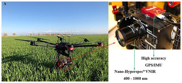 UAV platform and airborne imaging hyperspectral sensor.