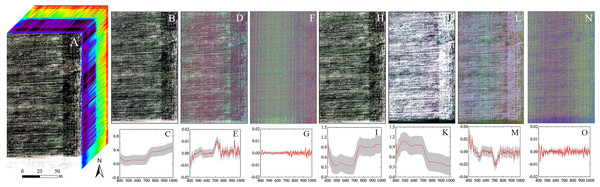 The hyperspectral imageries and spectral curves based on different pretreatments.