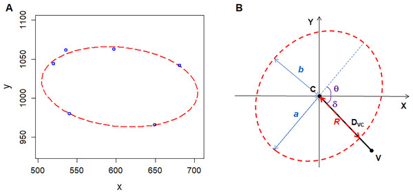 Geometry of polygonal cell and fitted ellipse.