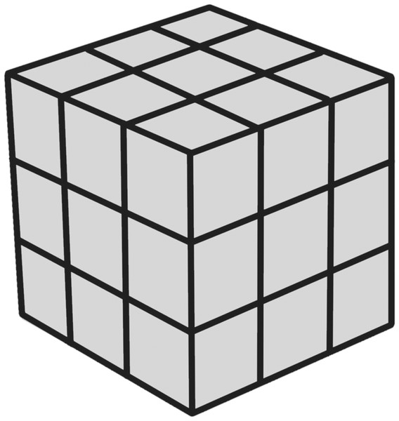 Mental image transformation task cube.