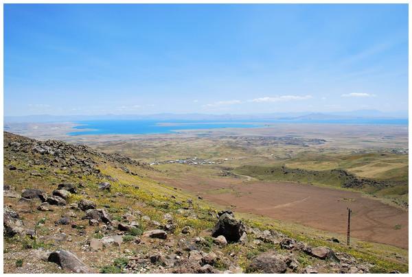 Habitat at the type locality (Kısıklı, Süphan Mts., Turkey) of Elaphe urartica sp. nov. in south-eastern Turkey (photo by Boris Tuniyev).