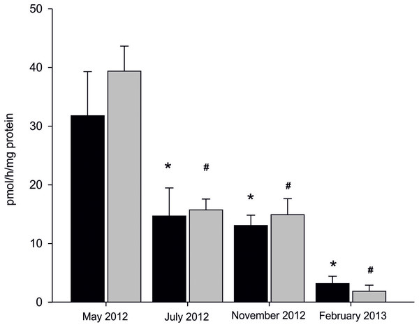 Seasonal differences in AE in microsomes isolated from gills (black column) and gonads (gray column) of M. trossulus.