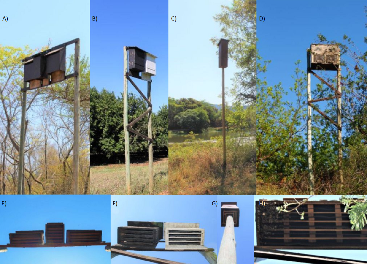 The use of bat houses as day roosts in macadamia orchards