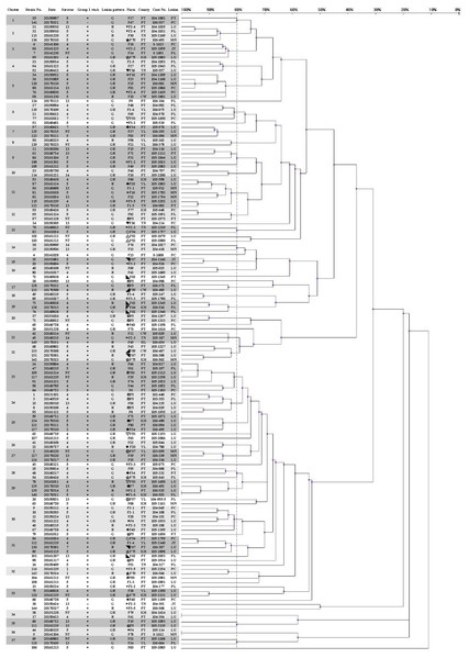 Dendrogram showing relationships of and information on 145 G. parasuis strains.