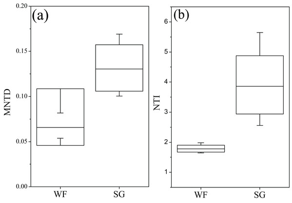 Variation of mean nearest taxon distance (MNTD) and the nearest taxon index (NTI) of fungal community during summer growing and winter fallow stage.