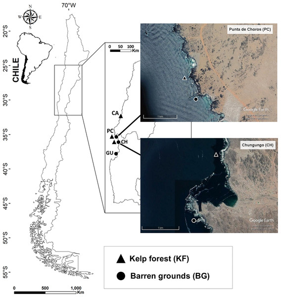 Map of the four sampling locations along the Chilean coast and their corresponding habitats.