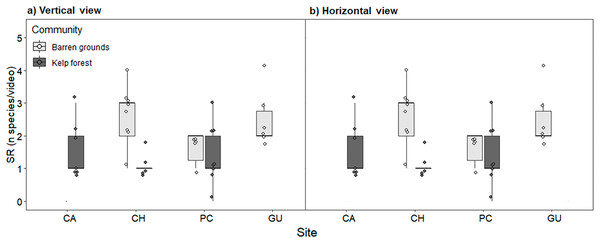 Fish species richness (SR, number of species video−1) by study site, observed in videos with (A) vertical, and (B) horizontal view.