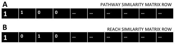 Pathway and Reach similarity rows.