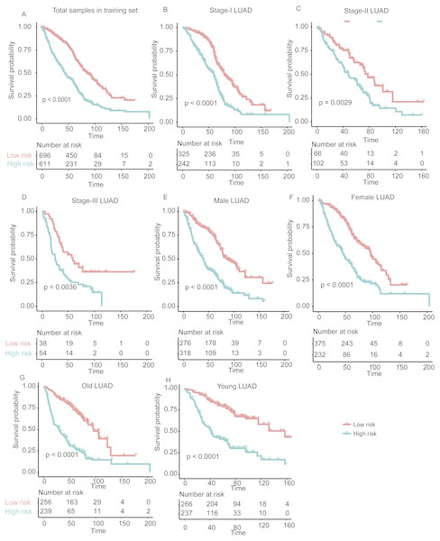 The performance of the stratification for the lung adenocarcinoma in training set based on the prognostic model.