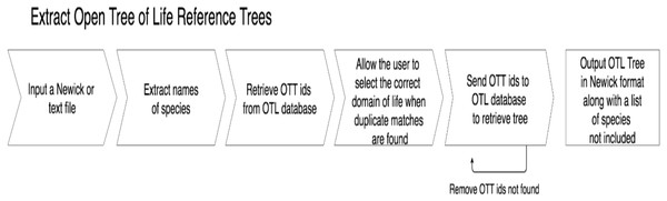 A flow chart depicting the process getOTLtree takes to infer a subtree phylogeny from the OTL.