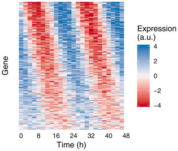 Example of medium-scale simulation in Simphony.