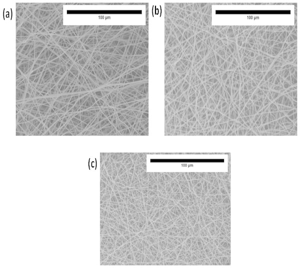 SEM photographs of (A) polyurethane, (B) polyurethane/CO composites, and (C) polyurethane/CO/NO composites.
