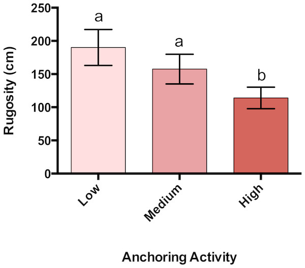 Rugosity differs across a gradient of anchoring activity.