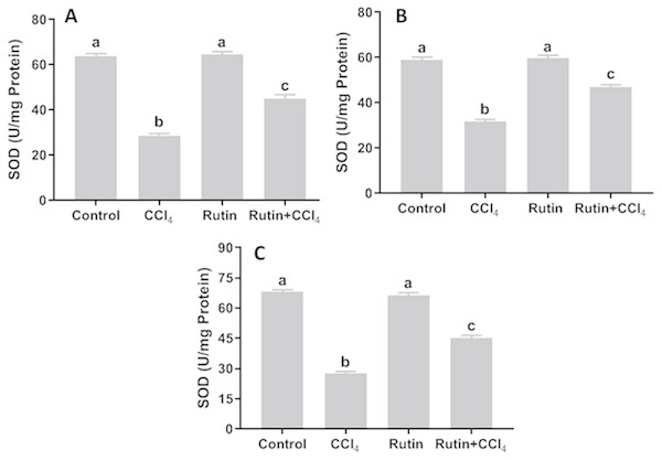 Tissue superoxide dismutase (SOD) levels in male rats after administration of CCl4 and/or rutin.