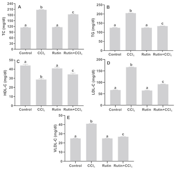 Serum lipid profile in male rats after administration of CCl4 and/or rutin.