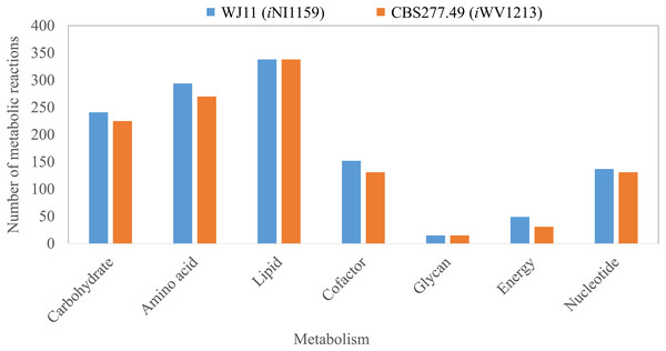 Comparison of metabolic reactions distribution between the GEMs of lipid-overproducing strain WJ11 (iNI1159) and reference strain CBS277.49 (iWV1213).