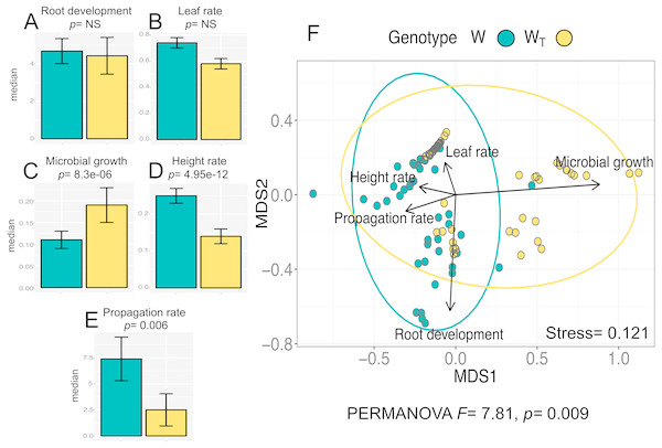 In vitro culture performance traits of W and WT populations.