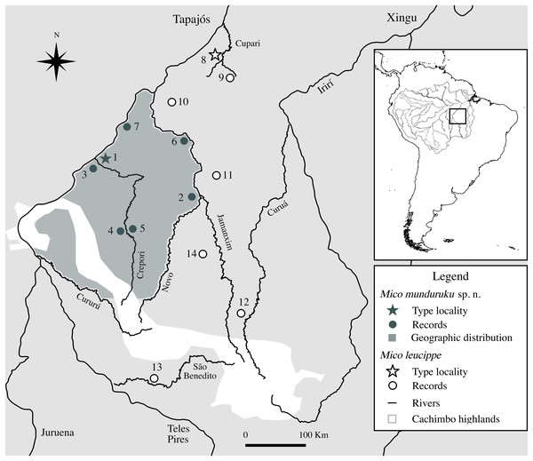 Geographic distribution of Mico munduruku sp. n. and records of M. leucippe in the Tapajós–Xingu interfluve, southern Amazonia (see Table 3 for locality details).