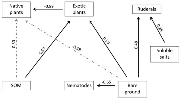 Final fitted model used to estimate strengths of interactions between plant, soil and nematode factors.