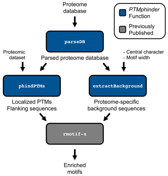 Workflow of PTMphinder Package.