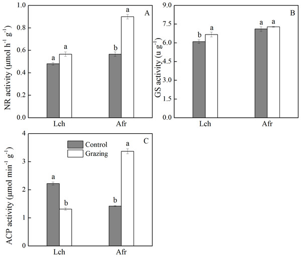 Effect of grazing on root enzymes of two species.