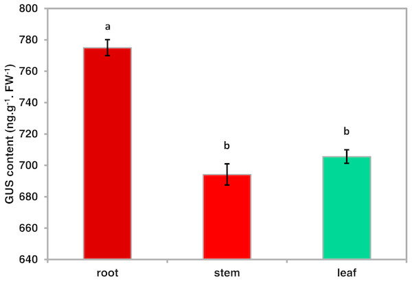 Quantitative GUS activity in the different tissues of transgenic Arabidopsis plants.