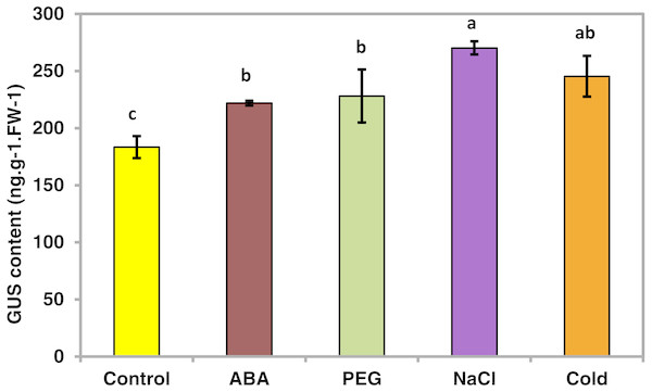 GUS activity of transgenic Arabidopsis in response to various stress treatments.
