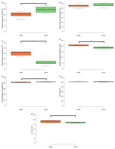 Box plots of ambient temperatures and thermal tolerances of Apis mellifera in urban and rural sites (minimum, lower quartile, median, upper quartile and maximum).