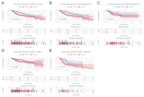 Relationship of hepatic PGM5 expression with overall survival.